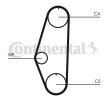 Cam belt kit CONTITECH STD10248000M19 Teeth Quant.: 128