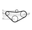 OEM CONTITECH CT800 HONDA CR-V Timing belt kit