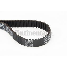 CONTITECH CT908 Erfahrung