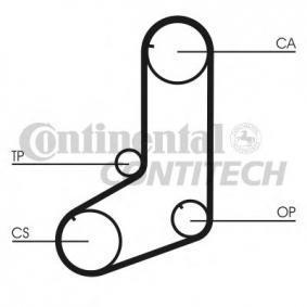 CT911 CONTITECH HTDA11629525M19 in Original Qualität