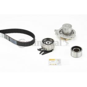 Water pump and timing belt kit Article № CT968WP1 £ 140,00