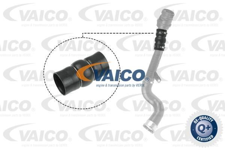 VAICO  V46-0831 Ladeluftschlauch