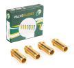 OEM Guía de válvula VG2664 de BGA
