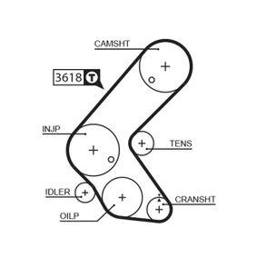 GATES FleetRunner™ Micro-V® Stretch Fit® 5563XS Zahnriemen Länge: 1248mm, Breite: 25mm