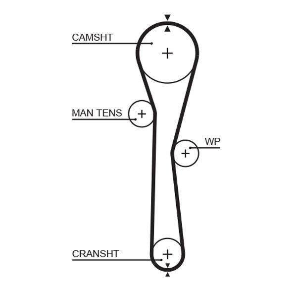 GATES FleetRunner™ Micro-V® Stretch Fit® 5577XS Zahnriemen Länge: 905mm, Breite: 23,4mm