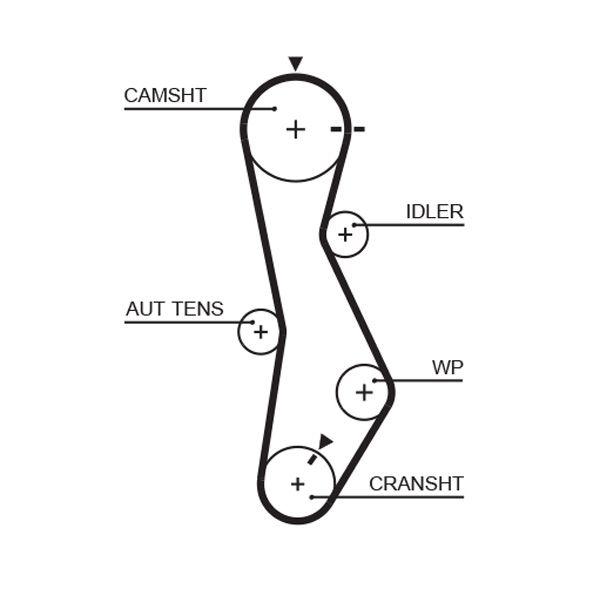 GATES FleetRunner™ Micro-V® Stretch Fit® 5579XS Timing Belt Length: 1172mm, Width: 28mm