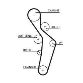 Touran 1t1 1t2 2.0FSI Zahnriemen GATES FleetRunner™ Micro-V® Stretch Fit® 5616XS (2.0 FSI Benzin 2006 AXW)