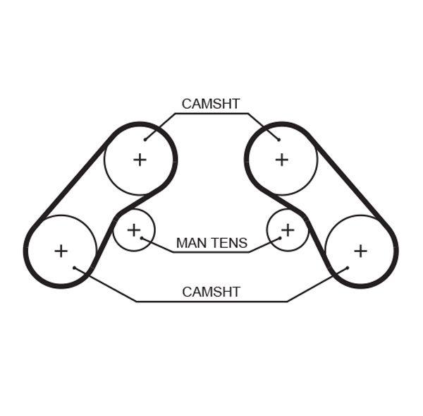 GATES FleetRunner™ Micro-V® Stretch Fit® 5655XS Zahnriemen Länge: 1374mm, Breite: 24mm