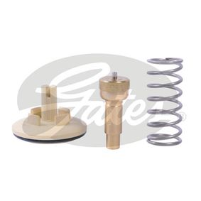 Thermostat, coolant TH41887G1 POLO (9N_) 1.2 MY 2008