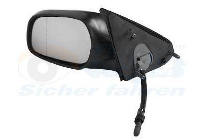 BuyOutside Mirror VAN WEZEL 0955803