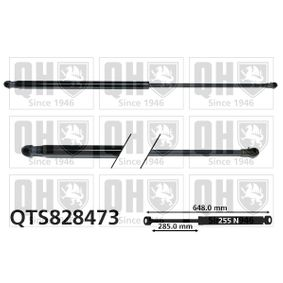 2013 Nissan Juke f15 1.6 DIG-T 4x4 Gas Spring, boot- / cargo area QTS828473