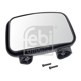 Außenspiegel, Fahrerhaus mit OEM-Nummer 901 810 1093