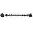 OEM Разпределителен вал CAM988 от AE