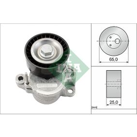 Polo 6r 1.4TDI Riemenspanner, Keilrippenriemen INA 534 0625 10 (1.4 TDI Diesel 2019 CYZB)