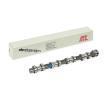 OEM Camshaft AMC 647024