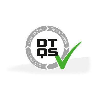 Amortiguador de Maletero DT 13.80703 conocimiento experto
