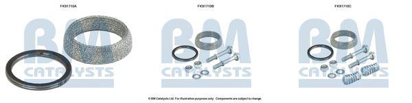 BM CATALYSTS  FK91710 Montagesatz, Katalysator