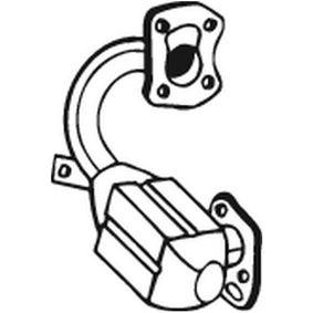 Katalysator 099-483 CLIO 2 (BB0/1/2, CB0/1/2) 1.5 dCi Bj 2020
