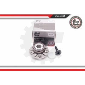 Golf 5 1.9TDI Radlager ESEN SKV 29SKV011 (1.9TDI Diesel 2008 BXE)