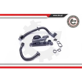 Repair Set, crankcase breather with OEM Number 06F129101L