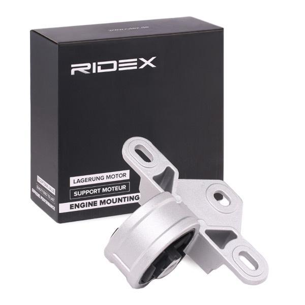Supporto Motore & Supporto Cambio RIDEX 247E0127 conoscenze specialistiche
