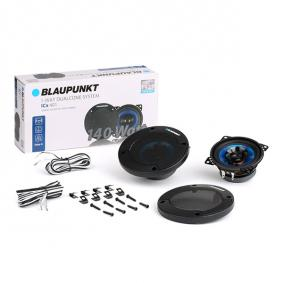BLAUPUNKT 1061556110001 cunoștințe de specialitate