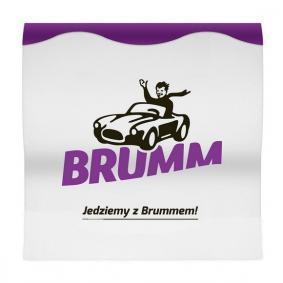 BRUMM  ACBRSFAL Rascador de hielo