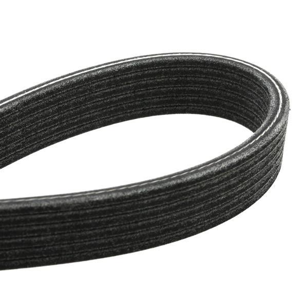 V-Ribbed Belt Set SKF VKMA31001 7316572284414