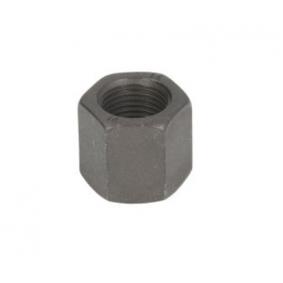 Wheel Nut with OEM Number 717 3025