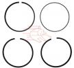 OEM Piston Ring Kit WSK.93.1 from TRUCKTECHNIC