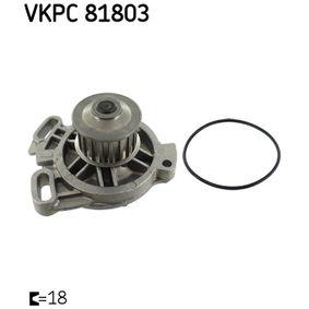 Wasserpumpe mit OEM-Nummer 023121004