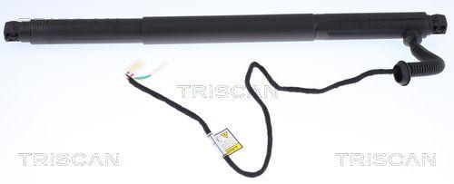 Heckklappendämpfer 8710 11302 TRISCAN 8710 11302 in Original Qualität