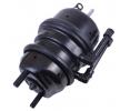 Spring-loaded Cylinder 4.454.1077.64 OEM part number 4454107764