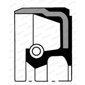Shaft Seal, differential NA5481 PUNTO (188) 1.2 16V 80 MY 2006