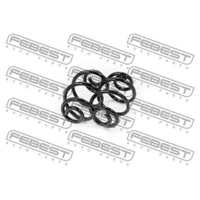 Suspension Kit, coil springs with OEM Number 33 53 1 138 284