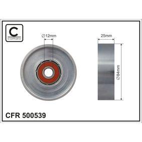 Τεντωτήρας, ιμάντας poly-V 500539 MICRA 2 (K11) 1.3 i 16V Έτος 1998