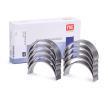 OEM Crankshaft Bearing Set 6038130000 from NE
