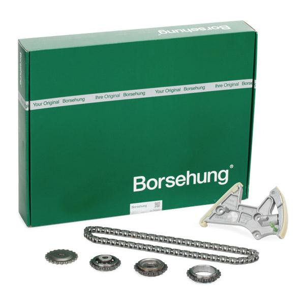 Borsehung  B18848 Steuerkettensatz