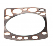 OEM Gasket, cylinder head 10755.00 from LEMA