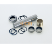 OEM Repair Kit, kingpin 230.086 from CEI
