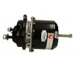 OEM Spring-loaded Cylinder ST.20.247 from Truckline