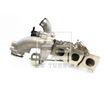 OEM Lader, Aufladung 131560 von BU