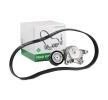 Poly v-belt kit INA 14366558 Check alternator freewheel clutch & replace if necessary