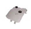 OEM Ausgleichsbehälter, Kühlmittel 3336-RT102001 von GIANT