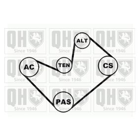 V-Ribbed Belt Set Article № QDK17 £ 140,00