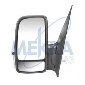 Außenspiegel, Fahrerhaus mit OEM-Nummer 0008106919