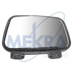 Außenspiegel, Fahrerhaus mit OEM-Nummer A9018101093