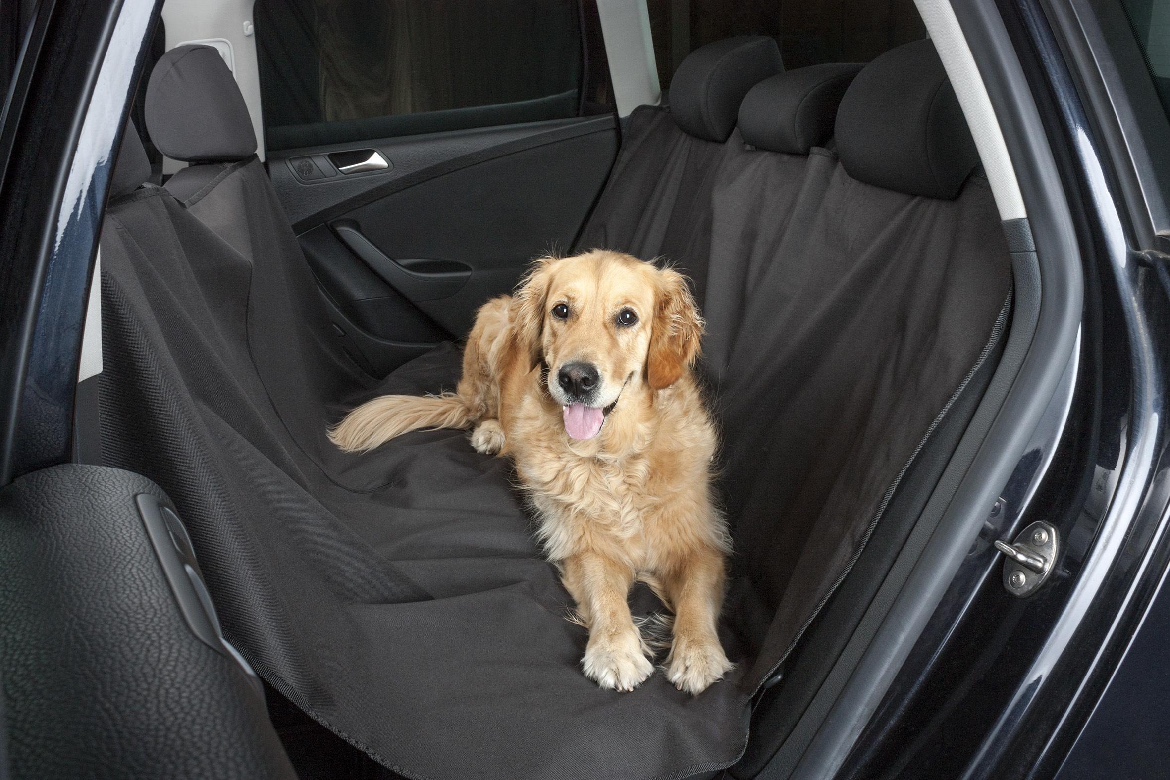 Skyddande bilmattor för hundar 13611 WALSER 13611 original kvalite