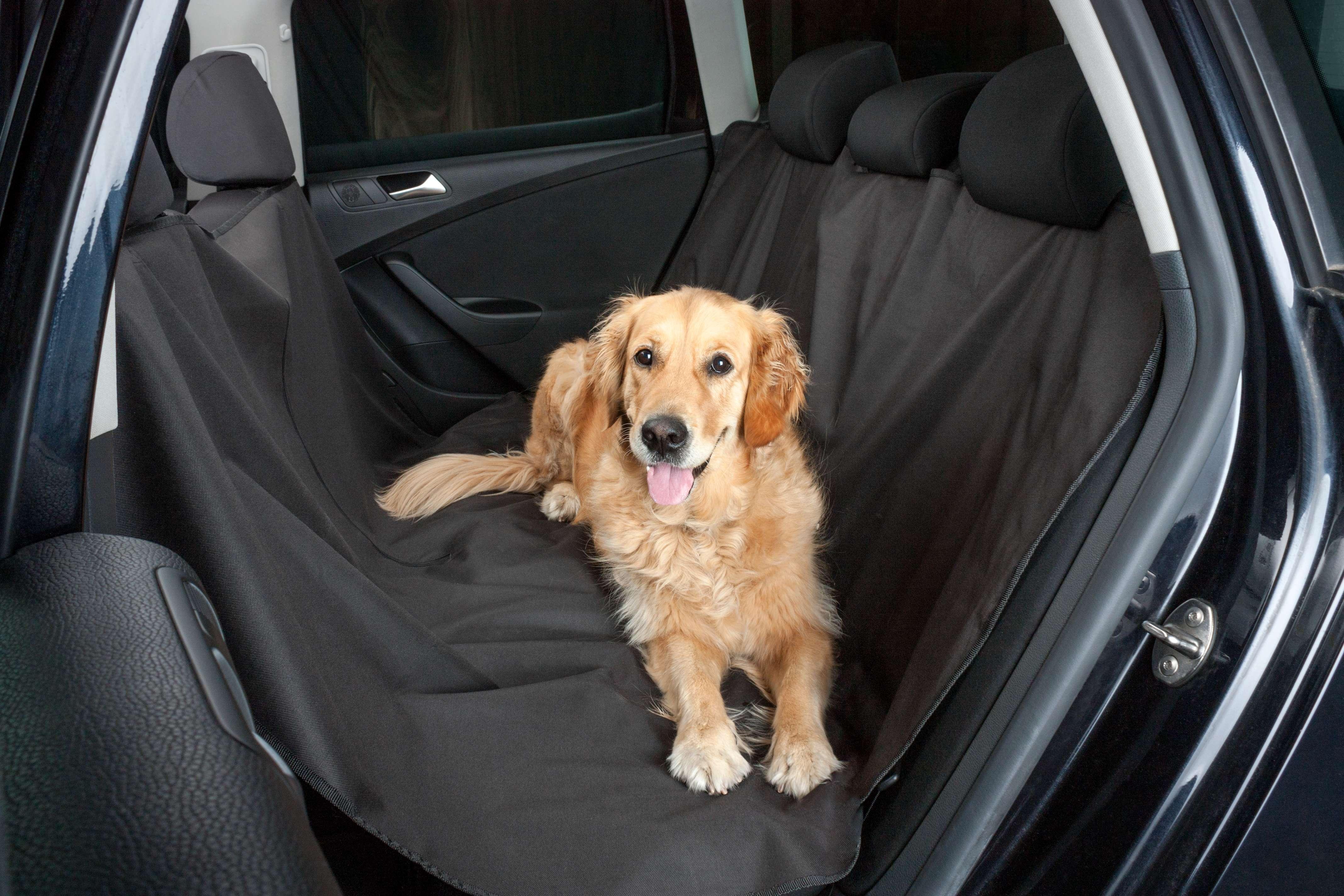 Ülésvédő huzat kutyákhoz WALSER 13624 szaktudással