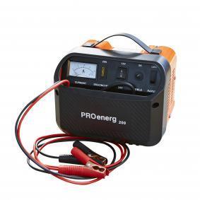 PROENERG Batterieladegerät 206